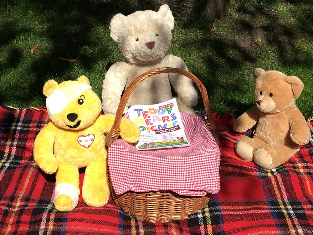 Teddy Bears Picnic at Linskill (Under 5's)